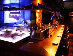OYSTER +